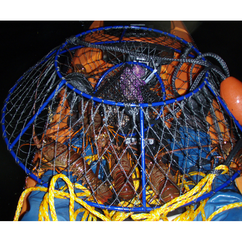 Lobster Hoop Net | Lobster House